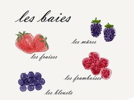 Certificazioni-lezioni-francese-collecchio